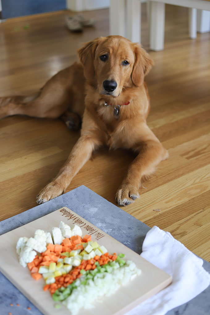 golden retriever puppy sitting by a board of vegetables looking at the camera