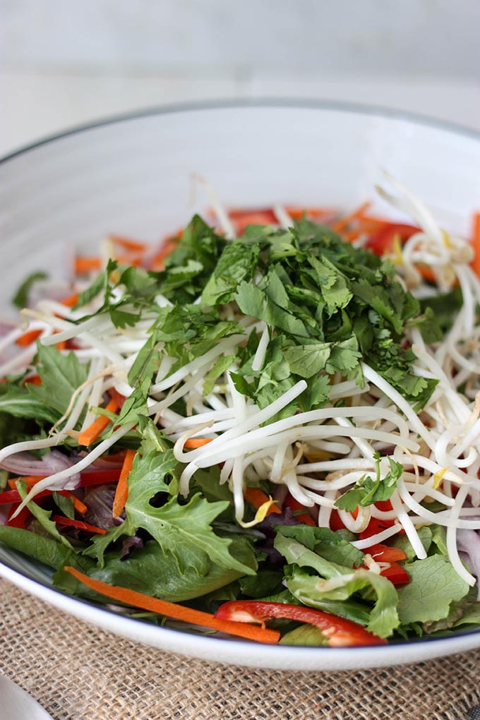 Thai Green Salad - fresh and light, crunchy, crispy and so good for summer www.thehomecookskitchen.com