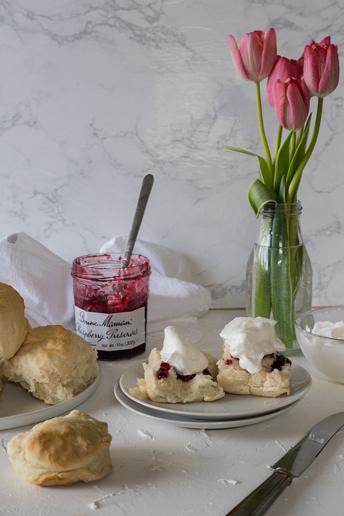 two lemonade scones on white plate with jam and cream, red tulips in vase in background and pot of raspberry jam to left