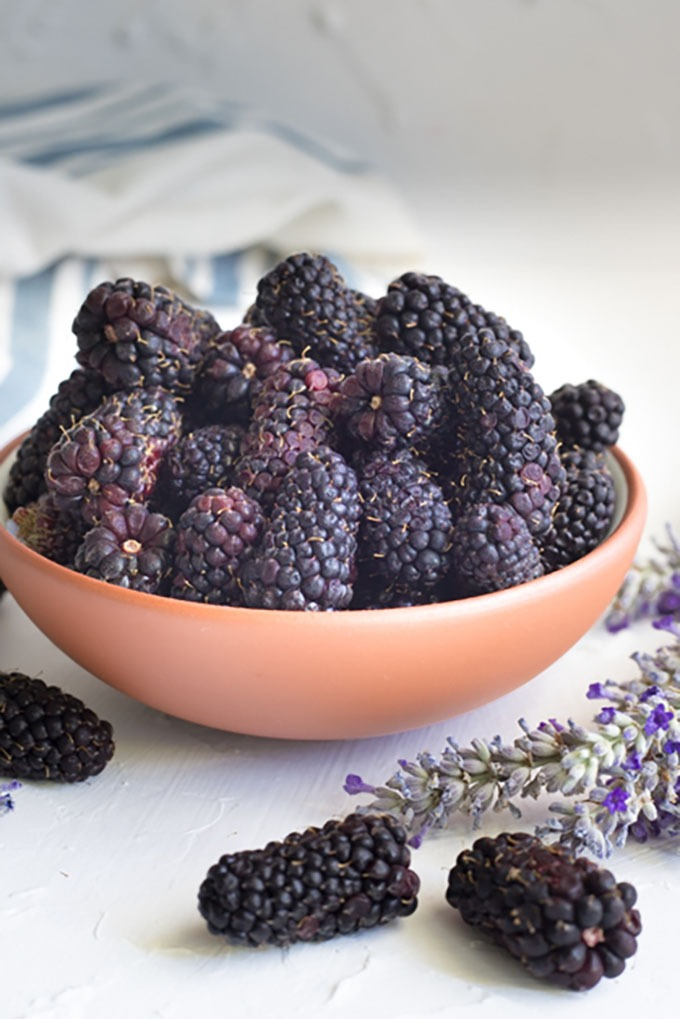 blackberries in a white and brown bowl, surrounded by fresh lavender